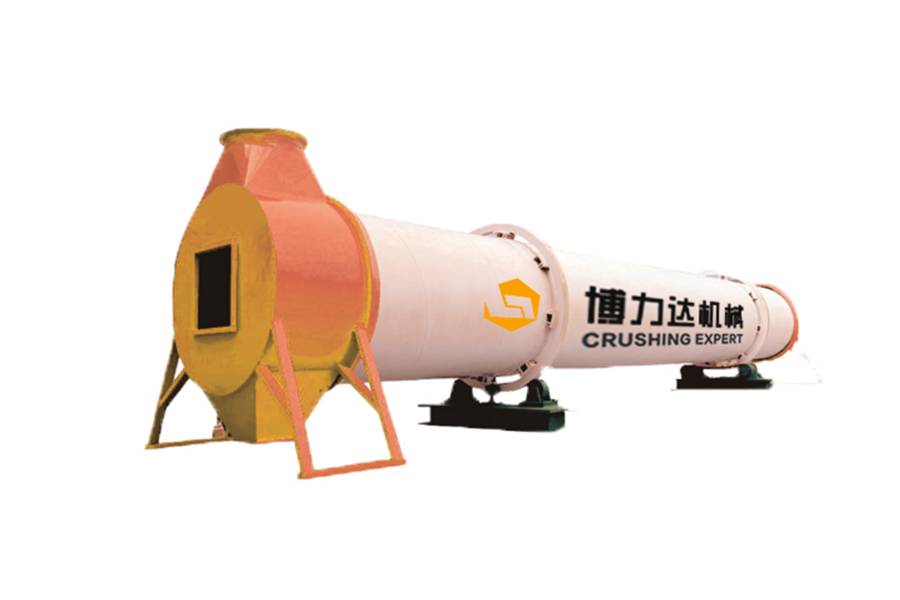 Single Drum Dryer
